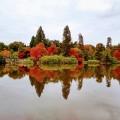 Autumn-colour-RickL
