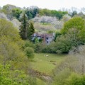 Spring-Grove-JohnVT